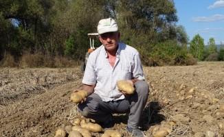 25 yıldan beri yetiştirdiği kavun ve patatesle geçimini sağlıyor