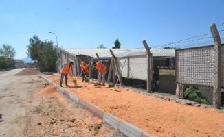 Bilecik Belediyesi'nden asfalt ve kaldırım çalışması