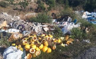 Yol kenarına dökülen çöpler, çevre kirliliğine sebep oluyor
