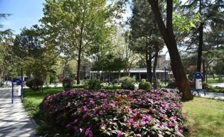 Çorlu Belediyesi tarafından yaptırılan Park Kafe vatandaşlardan tam not aldı