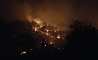 Denizli'de sarp arazide yangın