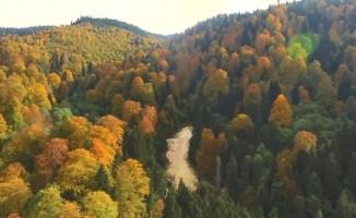 Giresun'da sonbaharın büyüsü