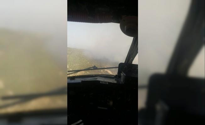 Hatay'daki orman yangınında soğutma çalışmaları sürüyor