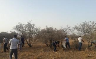 Kahtalı vatandaşlar mesire alanını temizledi