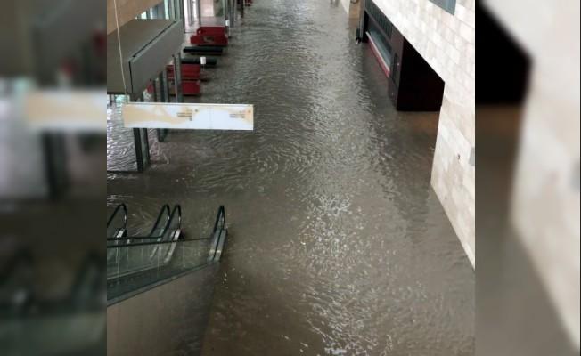 Katar'da sel felaketi, araçlar sular altında kaldı