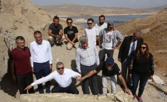Kayseri'de 2 metre 40 santim fil kafası çıkarıldı