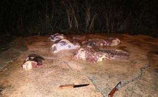Sağlık düşmanlarına gece yarısı baskın:400 kilogram at eti ele geçirildi