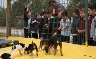 Su damlası miniklerinden hayvan barınağı'na ziyaret