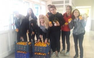 Burhaniye'de öğrencilere bedava mandalina dağıtıldı