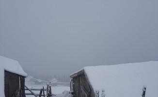 Giresun'da kar yağışı yüksek kesimlerde etkili oldu