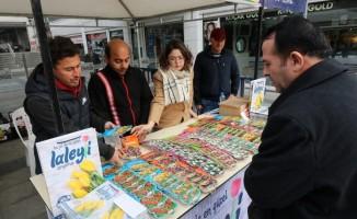 Kocaeil'deki lale festivali için satışlar başladı