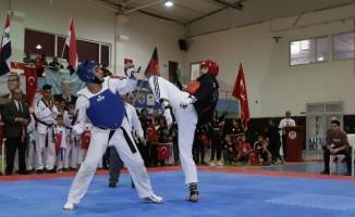 Türk dünyasının hapkido kardeşliği