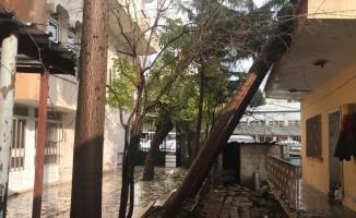 Rüzgar ağaç ve duvarı yıktı