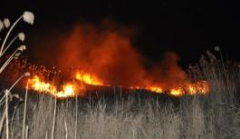 Bursa'da sazlık alanda büyük yangın!