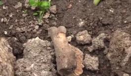 Bahçeye çiçek ekerken kemik parçaları buldu