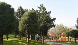 Bursa'da yeşil alan için tüm şartlar zorlanıyor