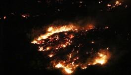 Alanya'daki orman yangınında son durum