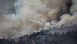 Bilecik'teki orman yangınları 4 gündür devam ediyor
