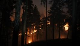 Domaniç'teki orman yangınını söndürme çalışmaları devam ediyor