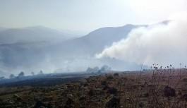 Erzurum'da ormanlık alanda yangın
