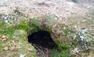 Ailesini katleden genç, mağarada yakalandı