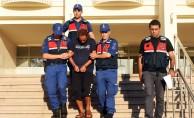 Bodrum'da cinayet zanlısı tutuklandı