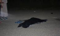 Kütahya'da otomobilin çarptığı kadın öldü