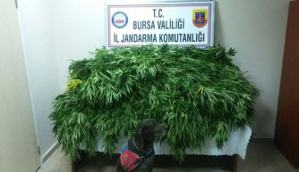 Bursa'da jandarmadan suç makinesine baskın