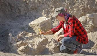 Çavuştepe'de devam eden kazıalrda 2 bin 800 yıllık at iskeleti bulundu