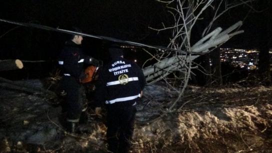 Bursa'da şiddetli lodos ağaçları söktü, çatıları uçurdu