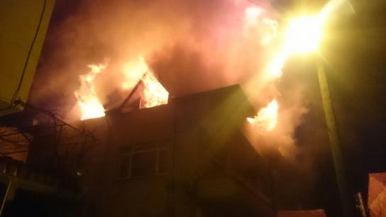 İznik'te gece yarısı korkutan yangın