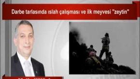 """Metin Külünk : Darbe tarlasında ıslah çalışması ve ilk meyvesi """"zeytin"""""""