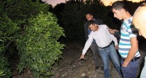 PKK'lı hainin öldüğü portakal bahçesi ilk kez görüntülendi