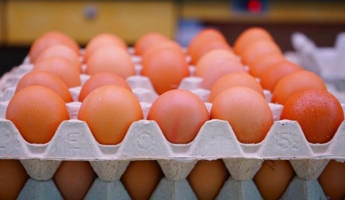 Yumurta satışında 'kod' dönemi