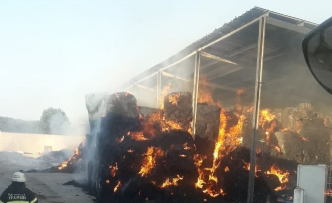 Kocaeli'de çiftlik yangını