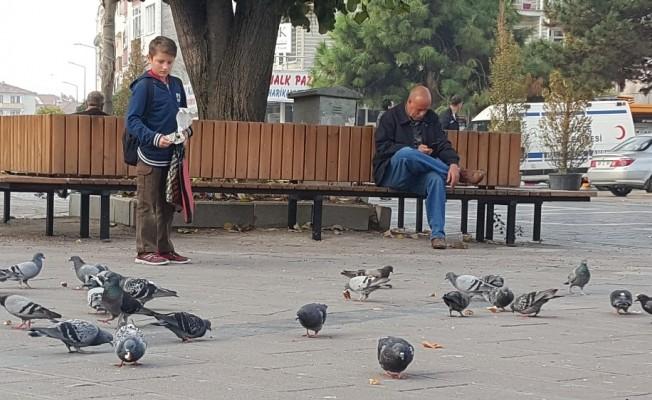 Düzce'nin güvercinli meydanları çocukların ilgi odağı oldu