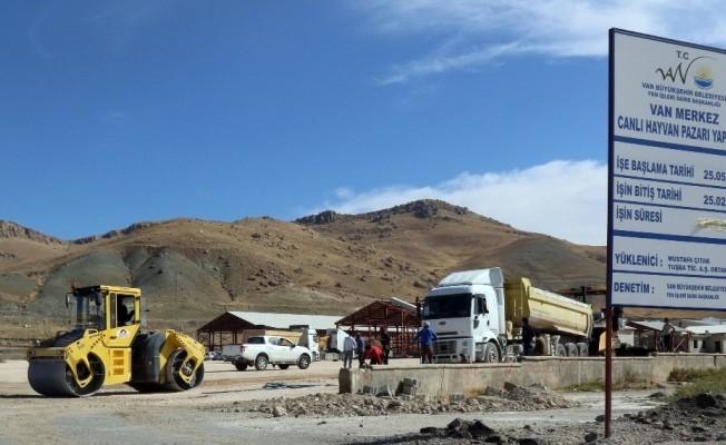 Hayvan pazarı alanı asfaltlandı