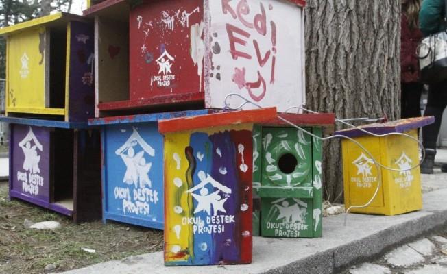 Öğrenciler sokak hayvanları için barınak yaptı