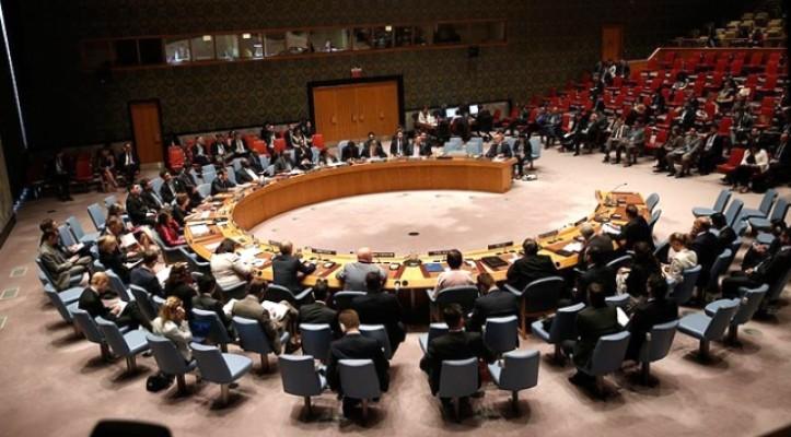 ABD'nin Venezuela tasarısı BMGK'da veto edildi