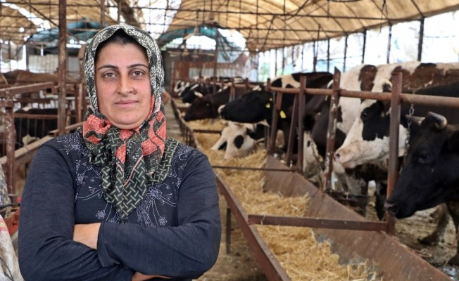 4 bilezikle girdiği hayvancılık işinde Kurban Bayramı öncesi servetine servet kattı