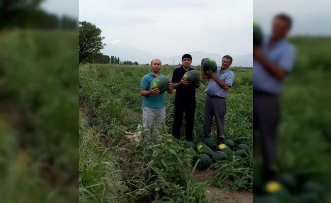 Rektör Alma, örnek çiftçi Akçan'ı ziyaret etti
