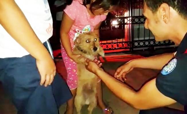 Yavru köpeğin imdadına itfaiye yetişti