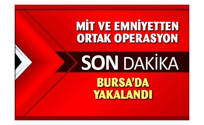 MİT ve PKK'dan ortak operasyon!.. Yakalandı