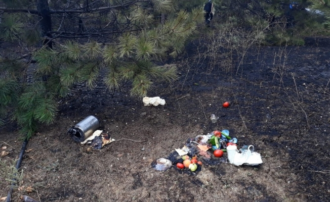 Piknikçiler ağaçlık alanı yaktı