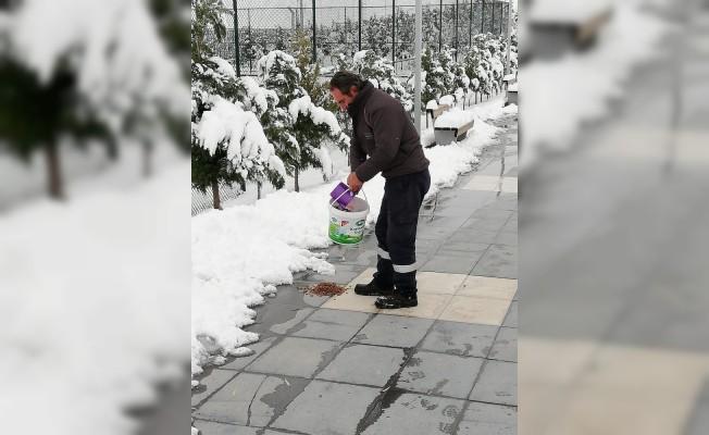 Aksaray Belediyesi doğaya yem bıraktı