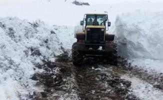 Beytüşşebap'ta kapanan köy yollar ulaşıma açıldı