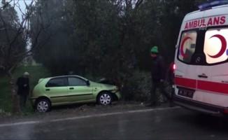 Bursa'da otomobil zeytin ağacına çarptı: 1 yaralı