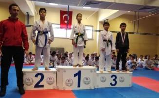 1308 Osmaneli Belediyespor karate takımı 30 madalya kazandı