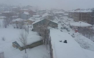 Bingöl'de kar yeniden etkisini göstermeye başladı