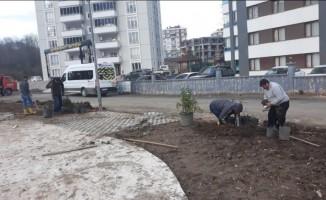 Fatsa Belediyesinin park çalışmaları